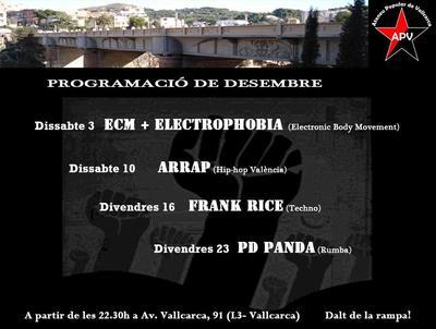 cartell apv desembre 2011.JPG