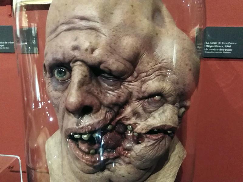 Siameses. En Casa con mis Monstruos. Exposición de Guillermo del Toro en Guadalajara (México) Foto C. Urabá..jpg