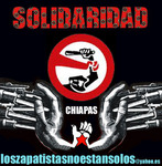 0_1Solidaridad_2008.jpg