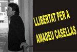 64142_banner_amadeu_copy1.jpg