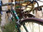 resized_bici taller.jpg