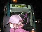 resized_tramvia.jpg