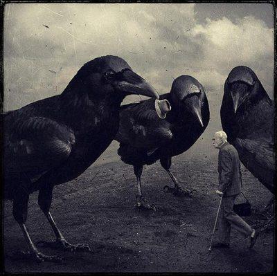 cuervos2.jpg