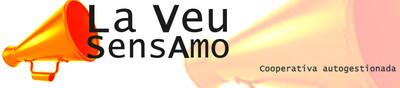 lvsa banner.jpg