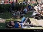 acampadabcn116.jpg