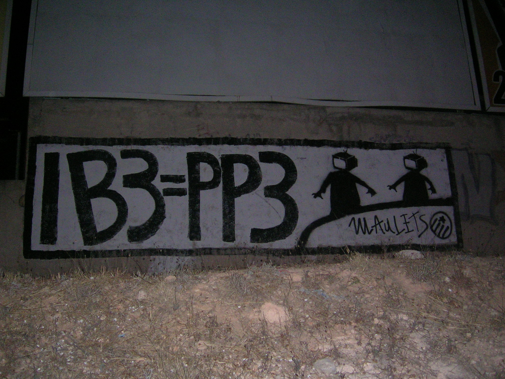 PP3 (6).JPG