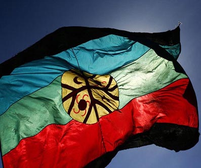 _ _ _ _ _bandera-mapuche_.jpg