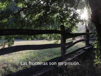 las-fronteras-son-mi-prision.jpg