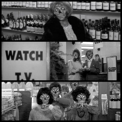 they live.jpg