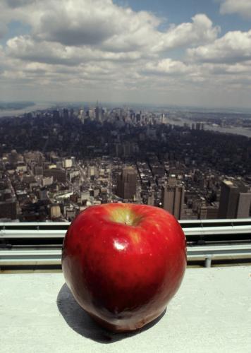 La gran manzana.jpg