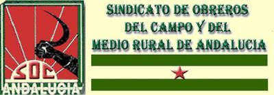 Logo_3_SOC_ .jpg
