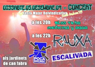 concert_fmr2009.jpg