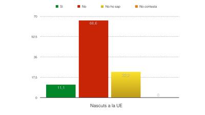 grafic3.jpg