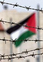 palestina2.jpe