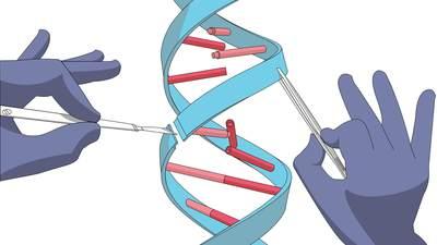 CRISPR-12-20-17-1.jpg