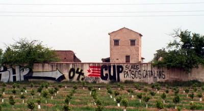 CUP_plana_baixa_2.jpg