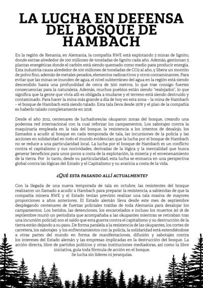 LaLuchaEnDefensaDelBosqueDeHambach1_p001-1.jpg