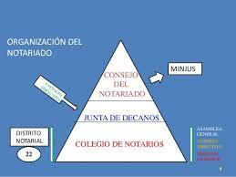 notarios 1.jpg