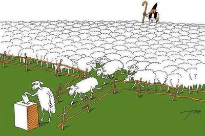 politica-electoralismo-ovejas.jpg