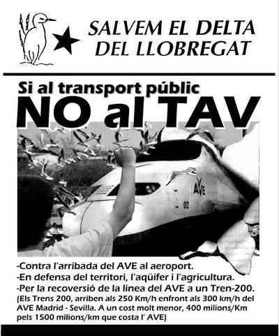 NoalTAV-2001.jpg