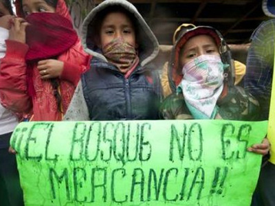 cheran-michoacan-indigenas20120322.jpg