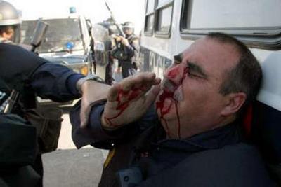 injured_pig_Cadiz_Feb3.jpg