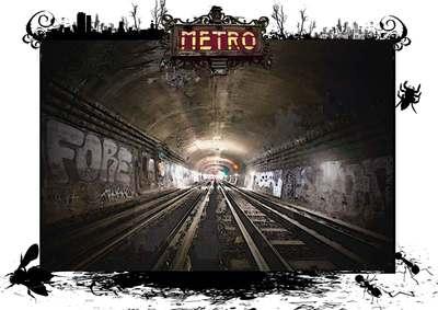 metroweb.jpg
