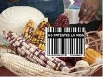 No_patentes_vida.JPG