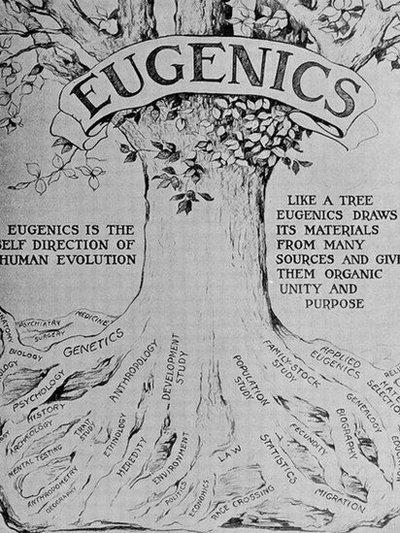 eugenesia.jpeg