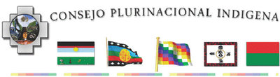 Consejo_Plurinacional_Indigena_logo_ok.jpg