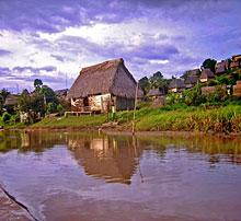 Derogaron artículos sobre explotación de la Amazonia.JPG
