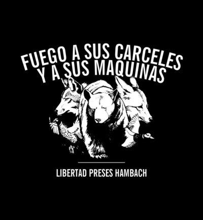 disec3b1o-camiseta-hambach-1.jpg
