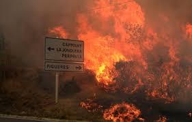 incendio forestal 2012.jpg