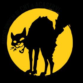 logo_acaservi3.png