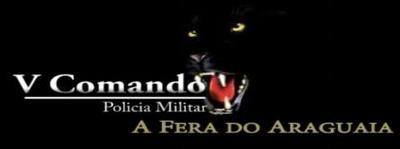 Logo V Comando.JPG