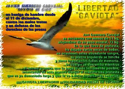 LIBERTAD-GAVIOTAweb.jpg