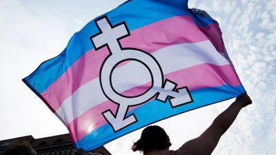 _101794433_transgenderflag-epa.jpg