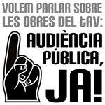 audiència pública.jpg