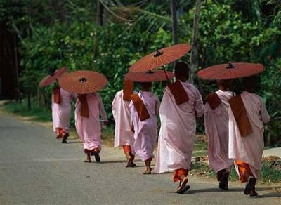 Budista, monjas con tunicas rosas,0057.jpg