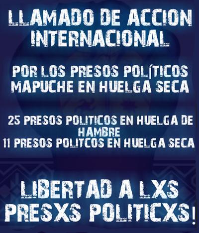 ____Mapuche__Solidaridad__2020.jpg