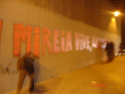 can mirella 073.jpg