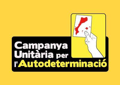 logo campanya estatuts.psd.jpg