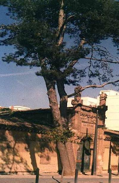 LA CERAMO DE BENICALAP1999.jpg