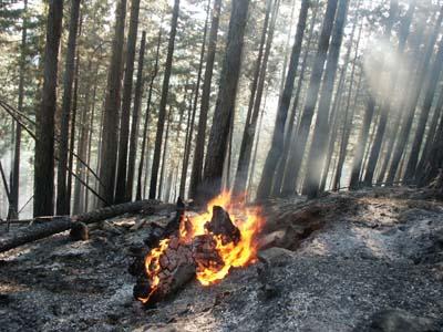 incendi.jpg