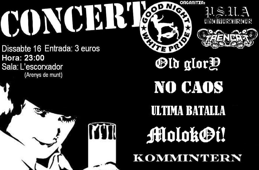 concert psua (cartell)(1).JPG