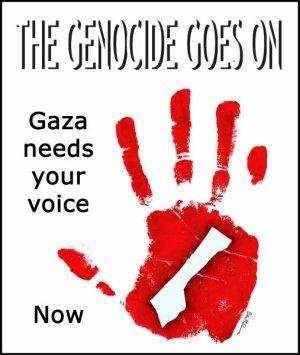 gaza needs you.jpg
