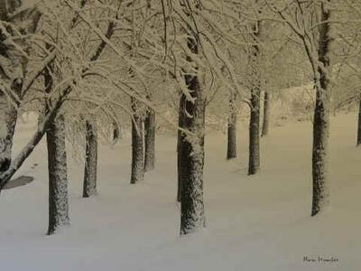 invierno.jpg