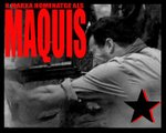 maquisX.jpg