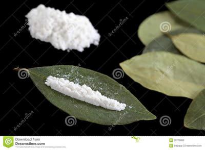 cocaína-en-las-hojas-de-la-coca-20715800.jpg