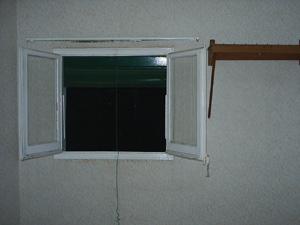 miles_finestranit.jpg
